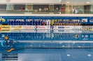 European waterpolo championships (Netherlands, Haag) Women's